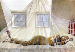 Day Dream by Andrew Wyeth