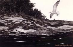Ledge on Huppers Island by Andrew Wyeth